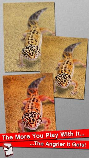 Angry Gecko Free