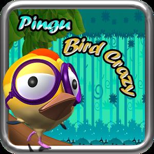 Pingu Bird Crazy APK