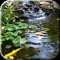 Pond with Koi Live Wallpaper icon