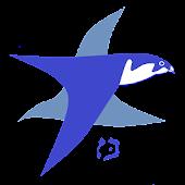 בז - מאגר המידע לציפורי ישראל