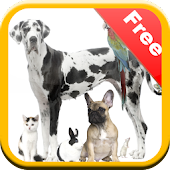 Pet Animals Rescue Game