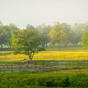 A Southern Illinois Morning by Steve Hall - Landscapes Prairies, Meadows & Fields ( cabin on the hill )
