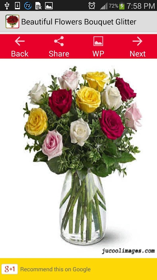 Beautiful Flowers Bouquet Glit Screenshot