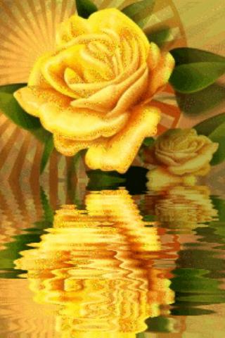Yellow Rose Reflecting - screenshot