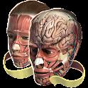 Evolutionary Anatomy icon