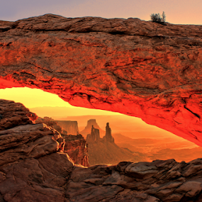 Mesa Arch Sunrise by Roxie Crouch - Landscapes Caves & Formations ( red, utah, canyonlands, red rock, sunrise, mesa arch,  )