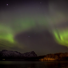 Aurora by Elisabeth Sjåvik Monsen - Landscapes Starscapes ( aurora borealis, northern lights, sea, seascape, arctic, coast, norway,  )