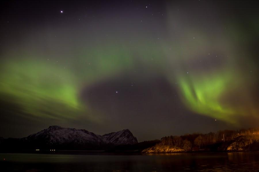 Aurora by Elisabeth Sjåvik Monsen - Landscapes Starscapes ( aurora borealis, northern lights, sea, seascape, arctic, coast, norway,  )