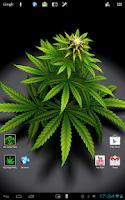 Screenshot of My Ganja Plant Live Wallpaper