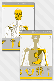 Enjoy Learning Anatomy puzzle - screenshot thumbnail