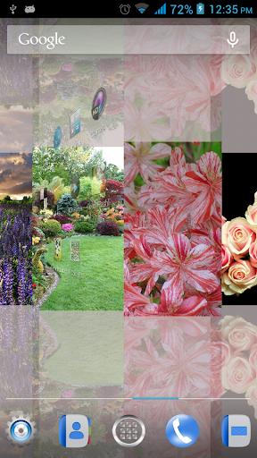 Alluring Flowers LWP