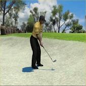 Pro Rotary Golf Swing