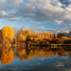 Deschutes River Reflection by Sandra Woods - Landscapes Forests ( water, oregon, reflection, usa, united states, aspen, deschutes, nature, autumn, sunset, trees, central oregon, river,  )