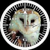 BoP 2 Barn Owl Analog Clock