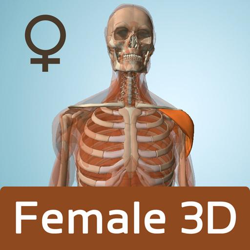 Female Anatomy 3D - Anatronica LOGO-APP點子