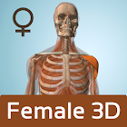 Female Anatomy 3D - Anatronica icon