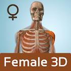 Female Anatomy 3D - Anatronica icon