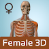 Female Anatomy 3D - Anatronica