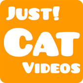 Just! Cute Cat Videos