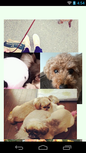 PhotoClip Dog