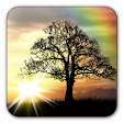 Sun Rise Fr.. file APK for Gaming PC/PS3/PS4 Smart TV