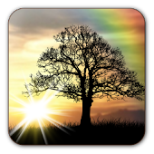 Download Sun Rise Free Live Wallpaper APK on PC