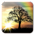 Sun Rise Free Live Wallpaper file APK for Gaming PC/PS3/PS4 Smart TV