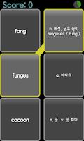 Screenshot of AE 중학필수영단어_Sentence