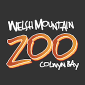 Welsh Mountain Zoo Guide
