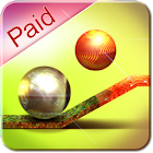 Balance Ball 3D (paid) icon