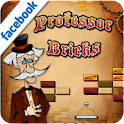 Professor Bricks logo