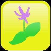 シンプル植物リスト-里山に咲く花-
