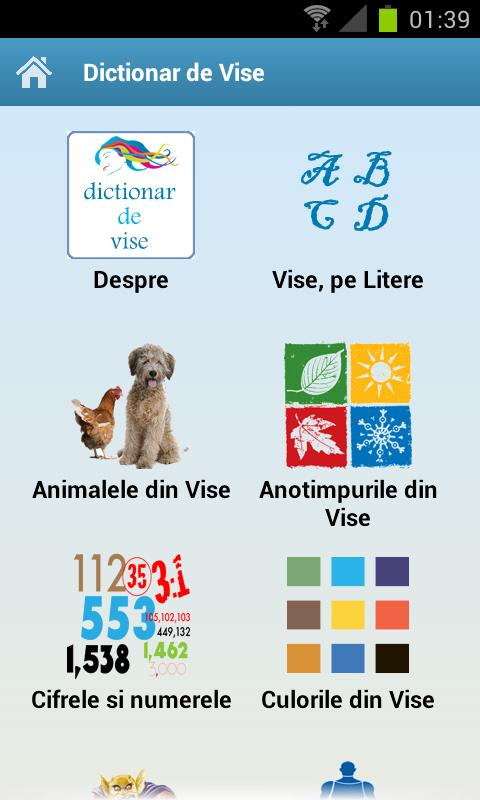 Dictionar de Vise - screenshot