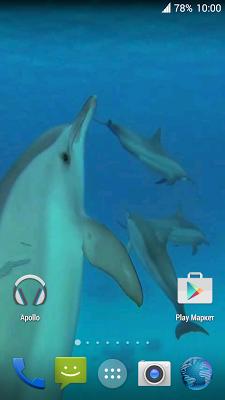 Dolphins. Live Video Wallpaper - screenshot