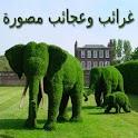 غرائب و عجائب مصورة icon