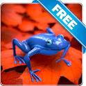 Blue or Ping frog Free lwp icon