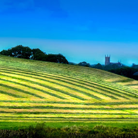 Farmer Grass by Jim Moran - Landscapes Mountains & Hills ( tree., hill, grass, green church, cut )