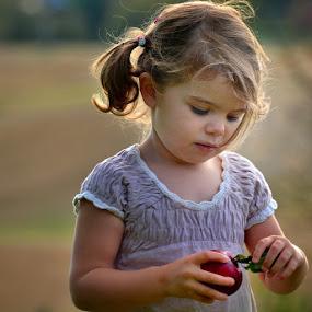 Farmer is harvesting this years apples... by Stine Engelsrud - Babies & Children Child Portraits ( apple fields, ahd_photo, ig_kids, all_my_own, worldcaptures, landscape_capture, best_portrait, wu_norway, ilovenorway_akershus, wueurope_, girl, whereinnorway, sunrays, igworldclub, live_planet, bestofnorway, ig_norway )