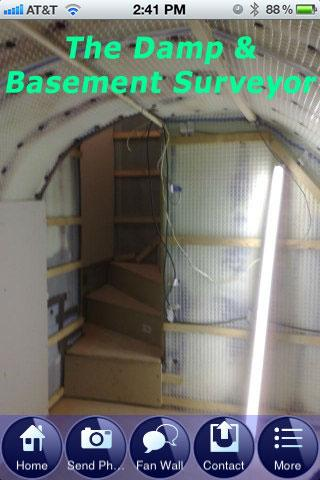 The Damp Basement Surveyor