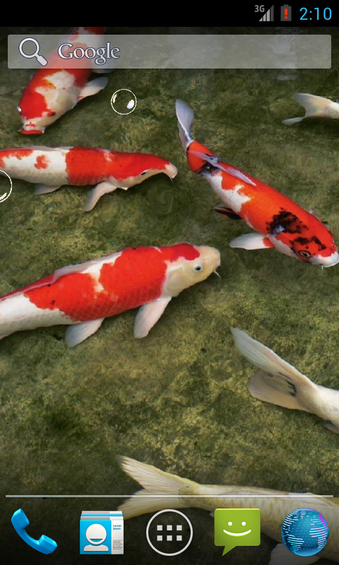 Real koi fish hd android apps on google play for Koi fish games