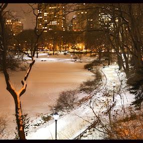 Central Park Path in Winter by Greg Bracco - City,  Street & Park  Night ( greg bracco, pathway, snow, path, snowflake, snowday, nyc, new york, new york city, central park, greg bracco photography, , city at night, street at night, park at night, nightlife, night life, nighttime in the city )