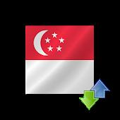 Singapore Transfer SGD