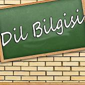 YGS Türkçe : Dil Bilgisi