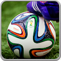 Football Soccer World Cup 14 icon