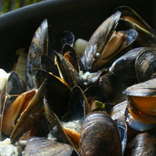 Mussels with Blue Cheese & Bacon Recipe