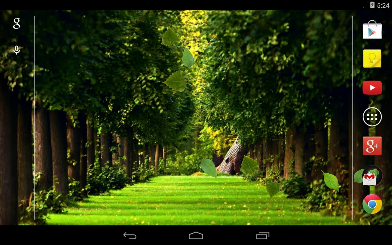 Falling leaves Live Wallpaper - screenshot