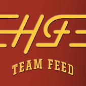 Team Feed