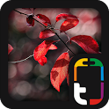 Beautiful Nature Theme icon