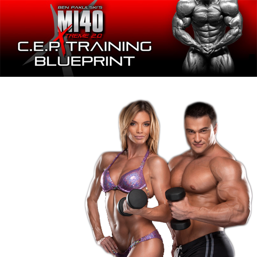 Muscle Building Program Tips