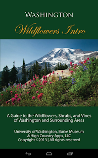 Washington Wildflowers Intro - screenshot thumbnail